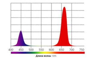 соотношение красного и синего спектра