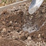 Химическое обеззараживание почвы
