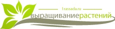 http://1rassada.ru