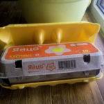 Емкость из под лотка от яиц для рассады