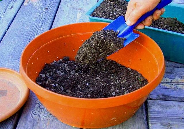 Подготовка грунта для рассады. Земля